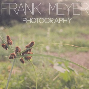 Profile picture for Frank Meyer