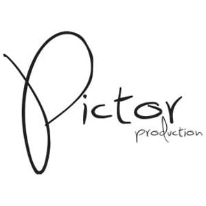 Profile picture for Pictor Production