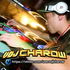 Profile picture for VDJ CHAROW