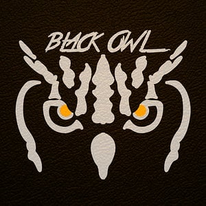 Profile picture for Black Owl