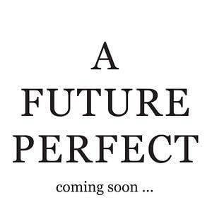 Profile picture for A Future Perfect