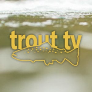 Profile picture for Trout TV