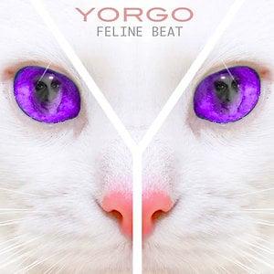 Profile picture for YORGO