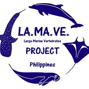 Profile picture for lamaveproject