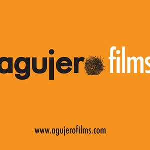 Profile picture for Agujero Films