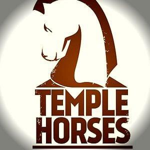 Profile picture for Temple Horses Studios