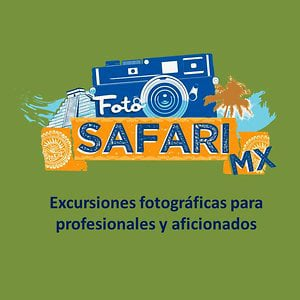 Profile picture for Foto Safari Mx