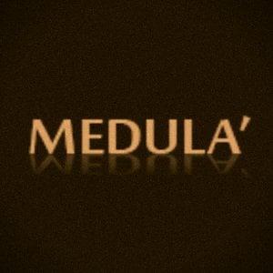 Profile picture for MEDULASTUDIO