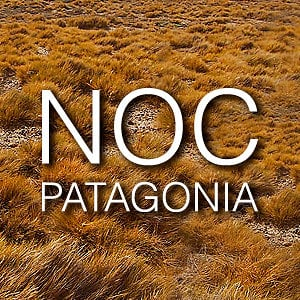 Profile picture for NOC PATAGONIA