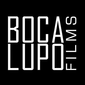 Profile picture for BOCALUPO FILMS