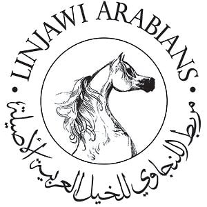Profile picture for Linjawi Arabians