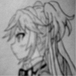 Profile picture for mizugorou