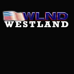 Profile picture for WLND TV