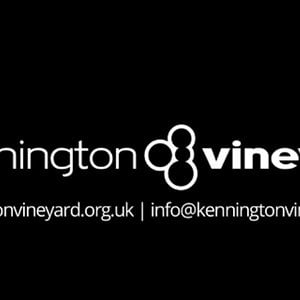 Profile picture for Kennington Vineyard