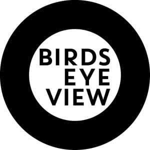 Profile picture for Birds Eye View