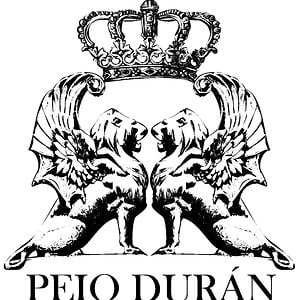 Profile picture for peio duran