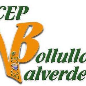 CEP de Bollullos/Valverde