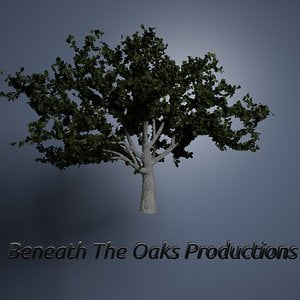 Profile picture for Beneath the Oaks Productions