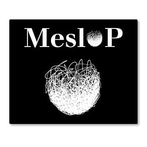 Profile picture for Meslop