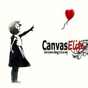 Profile picture for CanvasElite ZA
