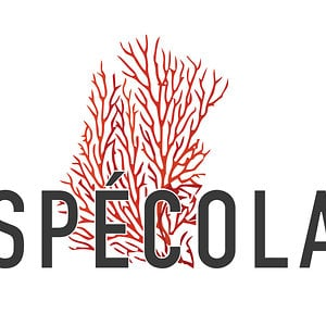 Profile picture for Specola