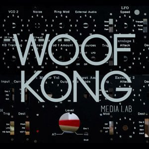 Profile picture for WOOF KONG Media Lab