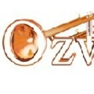 Profile picture for Ozwinds Brass and Woodwind