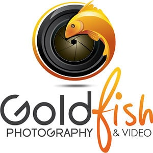 Profile picture for Goldfish Dubai