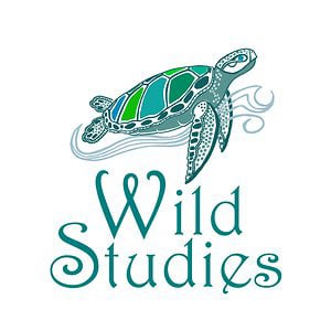 Profile picture for Wild Studies