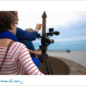 Profile picture for Alfonsina al Mar Cine