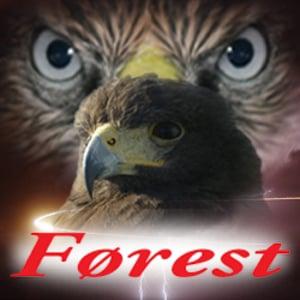 Profile picture for Førest Darkwood