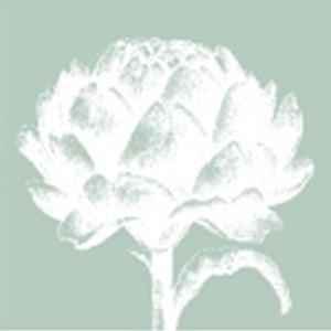Profile picture for Artichoke Trust