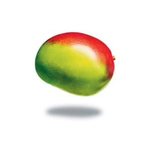 Profile picture for Mangos Inc
