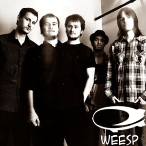 Profile picture for Weesp Band