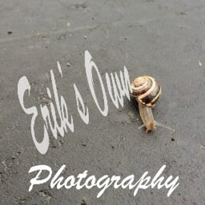 Profile picture for Erik's Own Photography