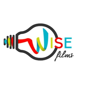 Profile picture for Wise Films