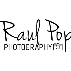 Profile picture for Raul Pop