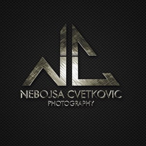 Profile picture for Nebojsa Cvetkovic