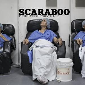 Profile picture for Scaraboo