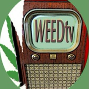 Profile picture for WEEDtv