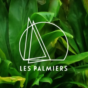Profile picture for Les Palmiers