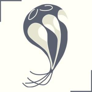 Profile picture for seph.li