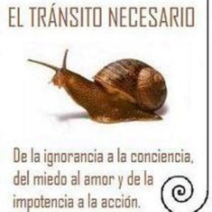 Profile picture for El Tránsito Necesario