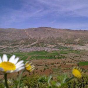 Profile picture for Nêribij