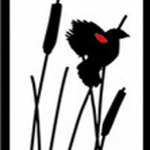 Profile picture for Dordt Digital Media