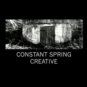 Profile picture for Constant Spring Films
