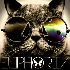 Profile picture for EUPHORIAeventi