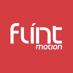 Profile picture for Flint Motion