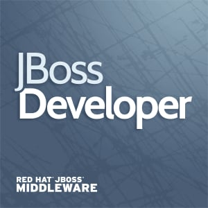 Profile picture for JBoss Developer