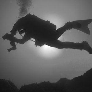 Profile picture for Oceanside Scuba